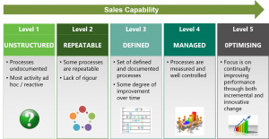 sales capability levels